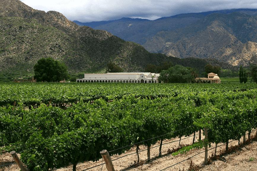Roteiro de vinho 1 pela Argentina