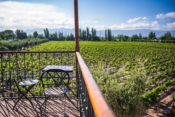 Roteiro do vinho em Maipú na Argentina