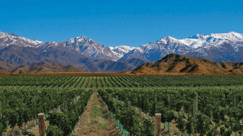 Roteiro do vinho no Vale do Uco na Argentina