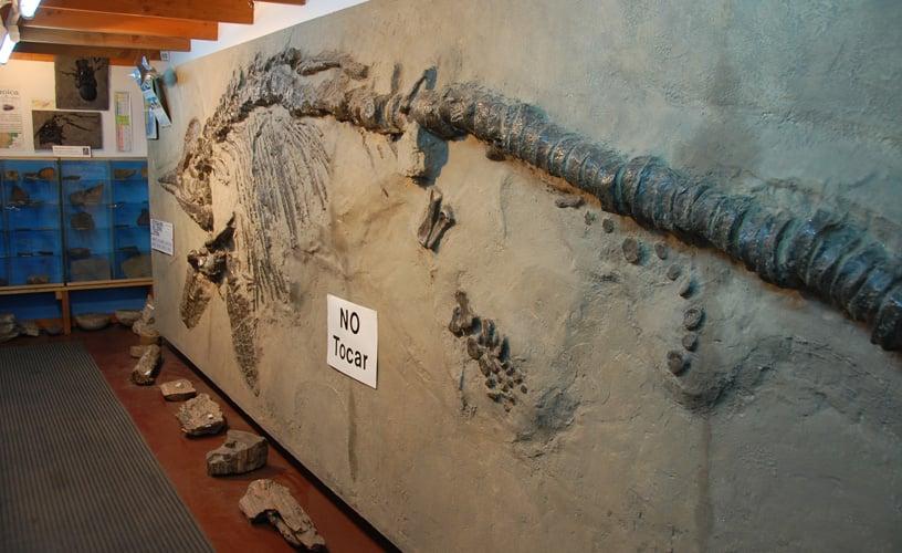 Museu Paleontológico em Bariloche