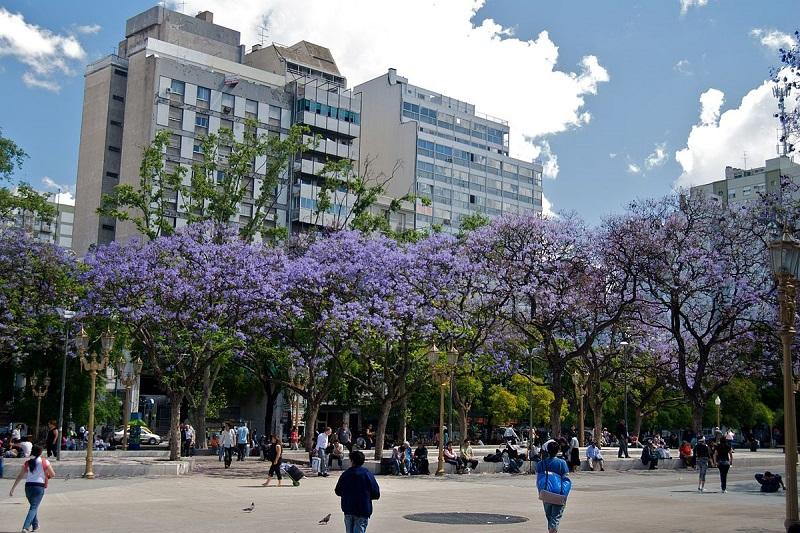 Clima em Buenos Aires - Primavera
