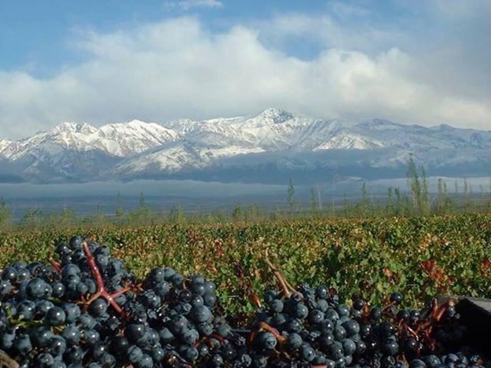 O que fazer no inverno em Mendoza