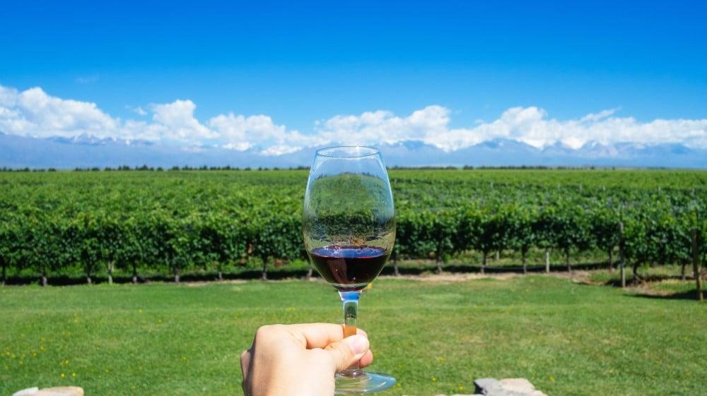 Vinícolas para comprar vinho em Mendoza