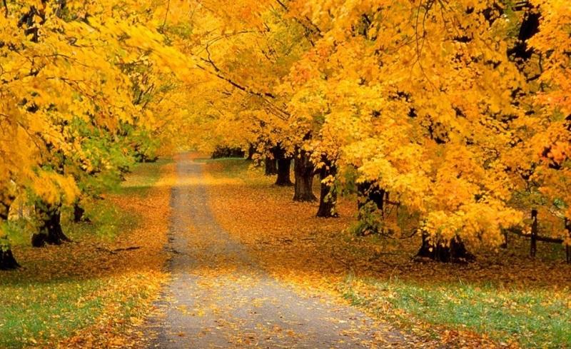 Outono em Mendoza